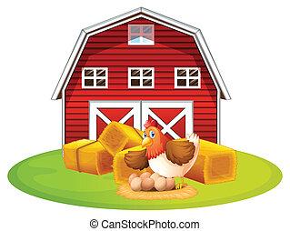 鶏, 納屋