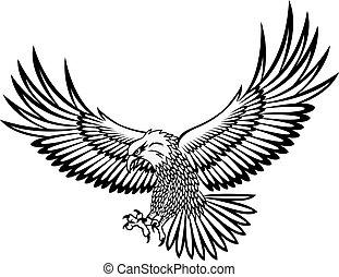 鷹, 矢量