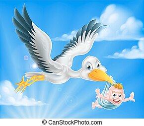 鸛, 嬰孩, 飛行, 藏品