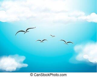 鸟飞行, 在中, the, 蓝的天空
