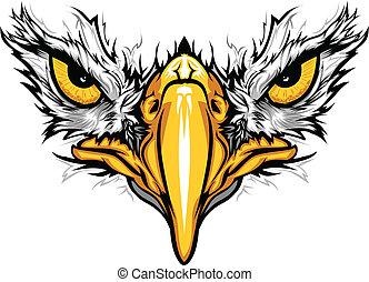 鹰, 眼睛, 同时,, beak, 矢量, 描述