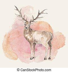 鹿, イラスト, 手, 水彩画, 背景, 引かれる