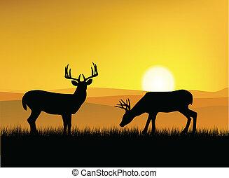 鹿, シルエット