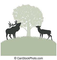 鹿, 単調な生活