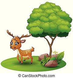 鹿, 木, 背景, 下に, 白, 漫画