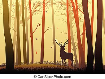 鹿, 森林