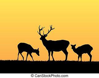 鹿, 背景