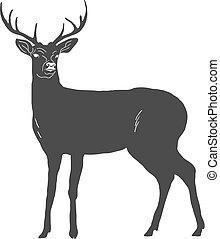 鹿, 隔離された, 手, バックグラウンド。, ベクトル, 引かれる, 白