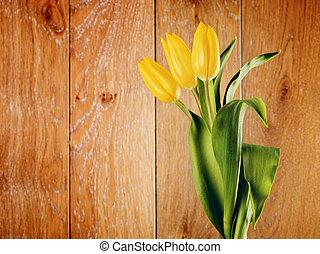 黃色的郁金香, 花