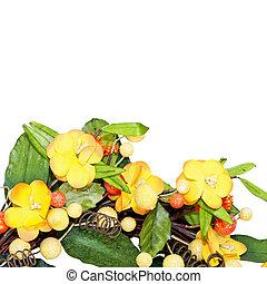 黃色, 花冠, 細節