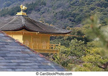 黃金,  pavilion), 寺廟,  kinkakuji,  (the