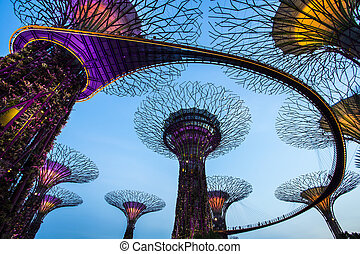 黄昏, 海湾, 天空, 花园, 新加坡