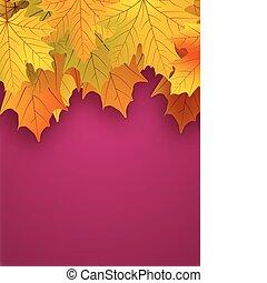 黄色, 秋休暇, 上に, a, 赤, バックグラウンド。