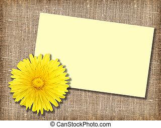 黄色, 1(人・つ), dandelion-flower, message-card