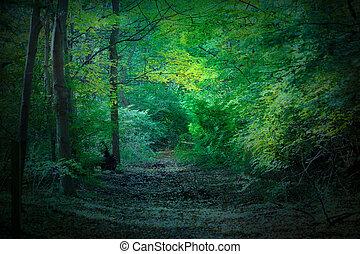 黑暗, 树林