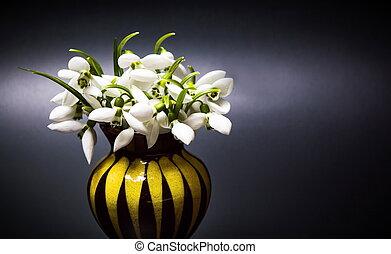 黑暗, 花, snowdrop, 背景, 瓶