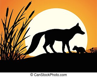 黑色半面畫像, 狐狸