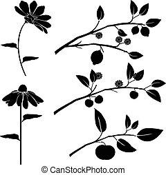 黑色半面畫像, ......的, 花, 以及, 樹