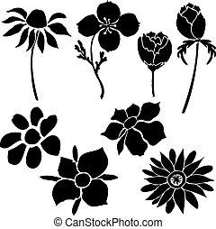黑色半面畫像, ......的, 花, vector.