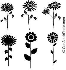 黑色半面畫像, 矢量, 花,  4