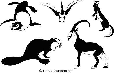 黑色半面畫像, 藝術, 動物