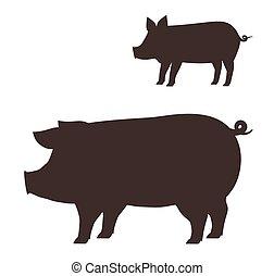黑色半面畫像, 豬, 在懷特上, 背景。