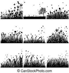 黑色半面畫像, 集合, 草
