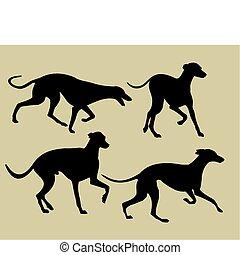 黑色半面畫像, 靈獅