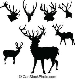 黑色半面畫像, 鹿