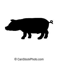 黑色, 黑色半面畫像, ......的, 豬, 被隔离, 在懷特上, 背景。