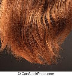 黒い背景, 毛
