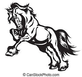 黒い馬, 白