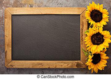 黒板, カボチャ, フレーム, 秋