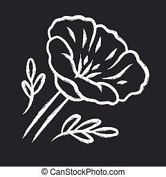 黒板, 隔離された, 咲く, イラスト, バラ, フィールド, blossom., ケシ, 共通, papaver, ...