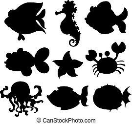 黒, セット, 水生 動物