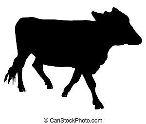 黒, 牛, シルエット, 白
