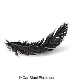 黒, 羽, 背景, 白, vector.