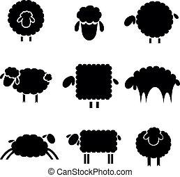 黒, sheeps, シルエット, 背景, ライト