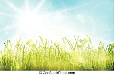 點, 藍色, 1701001, 天空, 太陽, 模糊背景, bokeh, 綠燈, 春天, gras