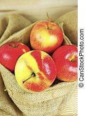 가방, 유기체의, 사과