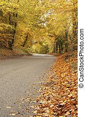 가을의 시골길