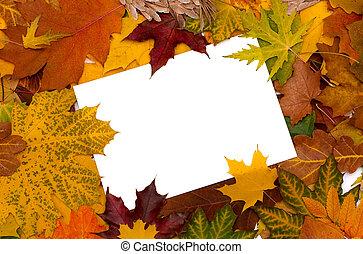 가을의 잎, 배경