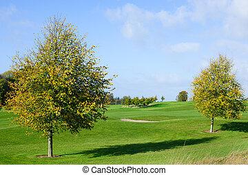 가을, 나무, 골프, 2, 과정