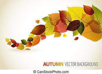 가을, 떼어내다, 꽃의, 배경