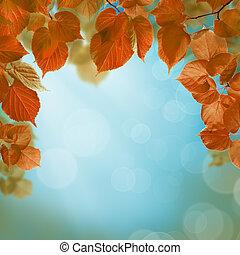 가을, 배경, 와, 잎