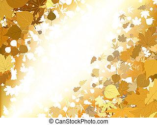 가을, 빛, 배경., eps, 8