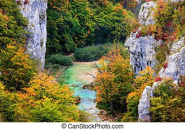 가을, 산, 숲