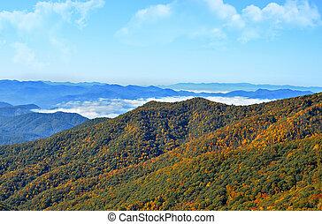 가을, 산, 조경술을 써서 녹화하다