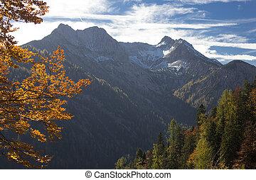 가을, 산 풍경