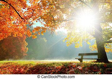 가을 조경